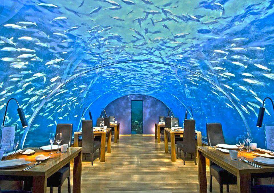 Conheça os 8 restaurantes mais estranhos do mundo!