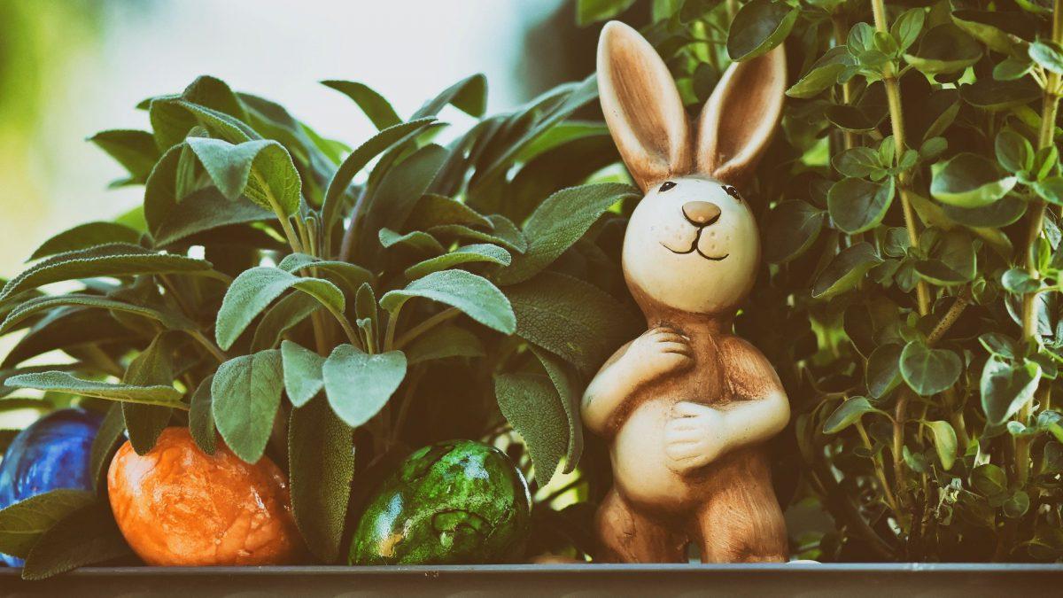 Decoração de páscoa: aprenda a deixar essa festividade ainda mais linda!